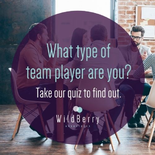 What type of team player are you?